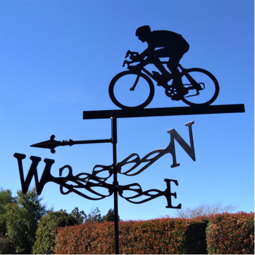 Cyclist Weather Vane